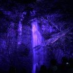箕面温泉スパーガーデン 箕面大滝